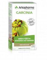 Arkogélules Garcinia Gélules Fl/45 à PARIS