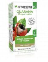 Arkogélules Guarana Bio Gélules Fl/45 à PARIS