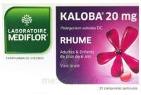Kaloba 20 Mg Comprimé Pelliculé Plq/21 à PARIS