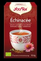 Yogi Tea Tisane AyurvÉdique Echinacea Bio 17sach/1,8g à PARIS