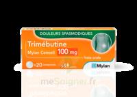 Trimebutine Mylan Conseil 100 Mg, Comprimé à PARIS