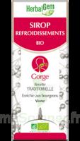 Herbalgem Sirop Bio Refroidissement 150ml à PARIS