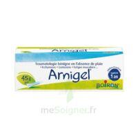 Boiron Arnigel Gel T(alumino-plastique)/45g à PARIS