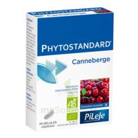 Pileje Phytostandard - Canneberge 20 Gélules Végétales à PARIS